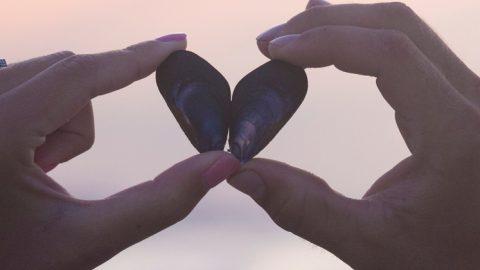 Το ιχθυέλαιο μειώνει το ινωδογόνο, αποτρέποντας την καρδιαγγειακή ασθένεια